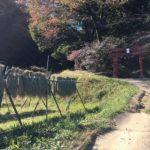 ちょっぴり紅葉の網代弁天山~小峰公園~山猫亭でチリコンカン(ΦωΦ)/