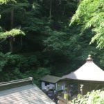 高尾山~弁天島温泉天下茶屋♨~弁天橋のネコちゃん~相模のフルーツいっぱいあんみつ