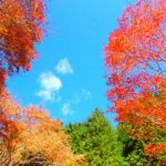 紅葉のウノタワ~大持山でお鍋~名栗温泉さわらびの湯♨