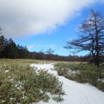 お正月だよ白駒池 1日目 北八ヶ岳ロープウェイ~麦草ヒュッテのパウンドケーキ~白駒荘♨