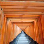 京都一周トレイル 1日目 東山コース(伏見稲荷~銀閣寺)~大豊神社~旬菜いまり~井筒湯♨